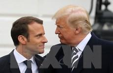 55% người Pháp không hài lòng với thái độ của Tổng thống Macron với Mỹ
