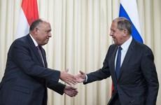 Ai Cập và Nga nhất trí tăng cường hợp tác chống khủng bố