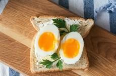 Báo cáo mới: Hãy ăn trứng mỗi ngày vì sức khỏe tim mạch của bạn