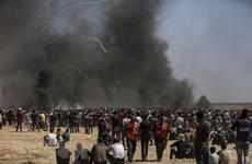 Kuwait lại đề xuất triển khai phái bộ quốc tế bảo vệ người Palestine