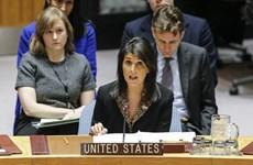 Mỹ phủ quyết nghị quyết của LHQ kêu gọi bảo vệ người Palestine