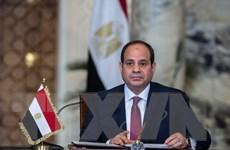 Điện mừng Tổng thống nước Cộng hòa Arab Ai Cập tái đắc cử