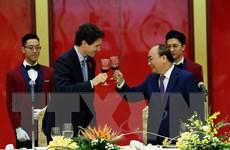 Tiếp tục đà phát triển quan hệ Đối tác toàn diện Việt Nam-Canada