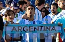 Argentina, Brazil mở lãnh sự tạm thời tại St.Petersburg dịp World Cup