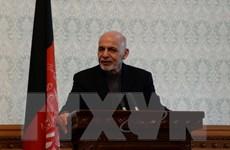 Ấn Độ ca ngợi sáng kiến hòa bình của Tổng thống Afghanistan