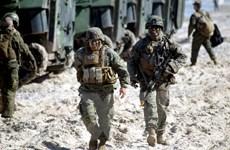 Tờ Washington Post: Lầu Năm Góc cân nhắc rút quân khỏi Đức