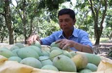 Kêu gọi doanh nghiệp Thụy Sĩ đầu tư vào nông nghiệp tại Việt Nam