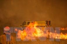 Mỹ: Hơn 2.000 lính cứu hỏa đối phó cháy rừng lan rộng tại California