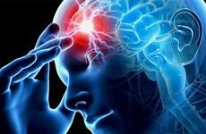 Phương pháp điều trị tiềm năng cho chứng mất trí và đột quỵ