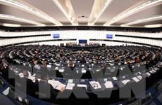 Nghị viện châu Âu bác bỏ dự luật về bản quyền gây tranh cãi