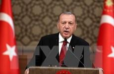 Tổng thống Thổ Nhĩ Kỳ chủ trì phiên họp đầu tiên của nội các mới