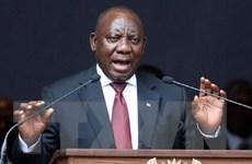 Nam Phi hoãn xúc tiến hợp tác hạt nhân với Nga do khó khăn kinh tế