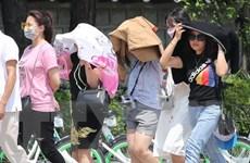 Hàn Quốc trải qua ngày nóng nhất trong lịch sử, lên tới 40,7 độ C