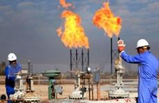 Chuyên gia: Cuộc chiến với Mỹ khiến Trung Quốc mua dầu với giá cao
