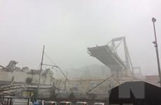 Italy muốn hủy hợp đồng với công ty quản lý cao tốc sau vụ sập cầu
