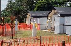 Dịch tả và bệnh Ebola diễn biến phức tạp tại Cộng hòa Dân chủ Congo