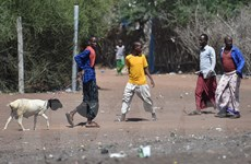UNHCR hỗ trợ hơn 81.000 người Somalia tự nguyện hồi hương từ Kenya