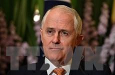 Thủ tướng Australia bác đề nghị bỏ phiếu bầu lại lãnh đạo đảng Tự do