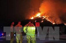 Nhà mạng Verizon bị chỉ trích vì cản trở việc dập tắt đám cháy rừng