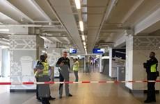 Cảnh sát Hà Lan lập lại trật tự tại nhà ga sau vụ tấn công bằng dao