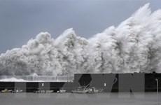 Bão Jebi càn quét khu vực miền Tây Nhật Bản, ít nhất 2 người tử vong