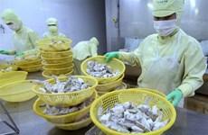 Cần Thơ xử phạt doanh nghiệp sử dụng lao động nước ngoài trái phép