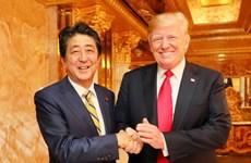 Nhật-Mỹ nhất trí tiếp tục phối hợp chặt chẽ trong vấn đề Triều Tiên