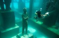 Ghé thăm bảo tàng dưới biển độc đáo nhất thiên đường du lịch Maldives