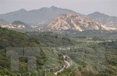 Triều Tiên-Hàn Quốc bắt đầu gỡ mìn trong khu phi quân sự