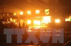 [Video] Bình Dương: Biển lửa bao trùm công ty gỗ sau tiếng nổ lớn