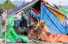 Myanmar cam kết tăng minh bạch khi giải quyết vấn đề người Rohingya