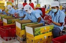 Việt Nam tìm kiếm đầu tư nhằm cải thiện năng suất xuất khẩu nông sản