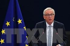 Chủ tịch EC muốn Romania gia nhập khối Schengen vào 2019