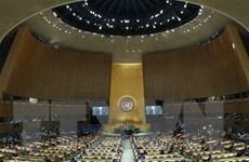 Liên hợp quốc từ chối xem xét dự thảo nghị quyết của Nga về INF