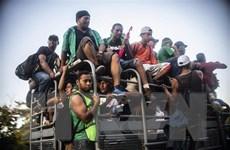Khoảng 1.500 người di cư Trung Mỹ tiến vào lãnh thổ Mexico