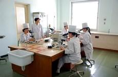 Hai miền Triều Tiên nối lại hoạt động hợp tác y tế sau 11 năm
