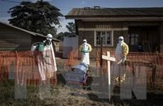 Biên giới Uganda và CHDC Congo có nguy cơ cao bị nhiễm virus Ebola