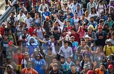 Những người nhập cư trái phép vào Mỹ hết cơ hội xin tị nạn
