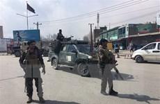 Taliban tấn công nhiều nơi ở Afghanistan, gần 30 người thiệt mạng
