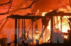 Sứ quán tại Mỹ thông tin về người Việt trong thảm họa cháy rừng
