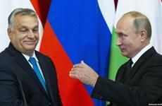 Chính phủ Hungary từ chối đề nghị dẫn độ 2 công dân Nga của Mỹ