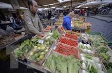 Giới chức EU tiếp tục kêu gọi Italy sửa đổi dự thảo ngân sách