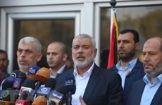 Vai trò của Ai Cập trong việc giúp giải quyết các vấn đề Trung Đông