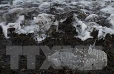 Rác thải nhựa làm ô nhiễm những tầng sâu nhất của đại dương