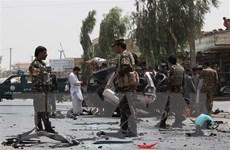 Đánh bom liều chết nhằm vào lực lượng an ninh Afghanistan