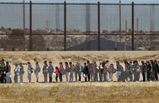 Brazil sẽ rút khỏi hiệp ước di cư toàn cầu của Liên hợp quốc