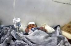 Liên hợp quốc: Nhiều người dân Yemen đang chết dần do thiếu lương thực