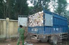 Tạm giữ 7 xe tải và 4 người do đổ trộm hàng chục tấn rác thải