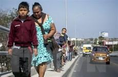 Mỹ kiểm tra sức khỏe toàn diện đối với trẻ di cư bị bắt giữ
