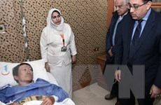 Đề nghị đảm bảo an ninh, an toàn cho các đoàn khách đi du lịch Ai Cập